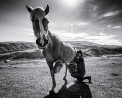 Konské mliečko