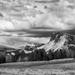 Alpe Di Siusi III