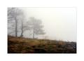 Stratený v hmle (už naozaj)