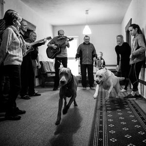 Psi sa bránia útekom ...