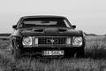 Fekete Mustang