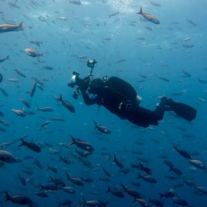 Farebný Peťo v rybacej polievke