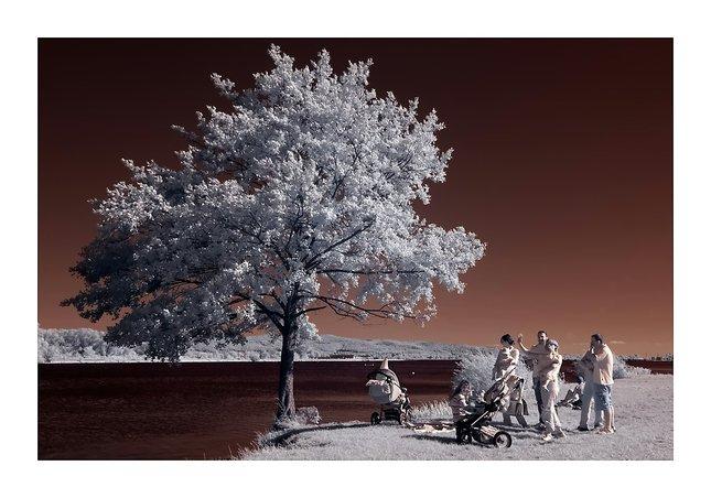 Infračervený piknik
