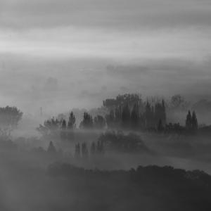 V objatí topoľov a hmly