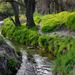 Krupiansky potok