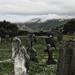 tajomno (Lynton Cemetery)