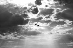 Sloboda z nebies