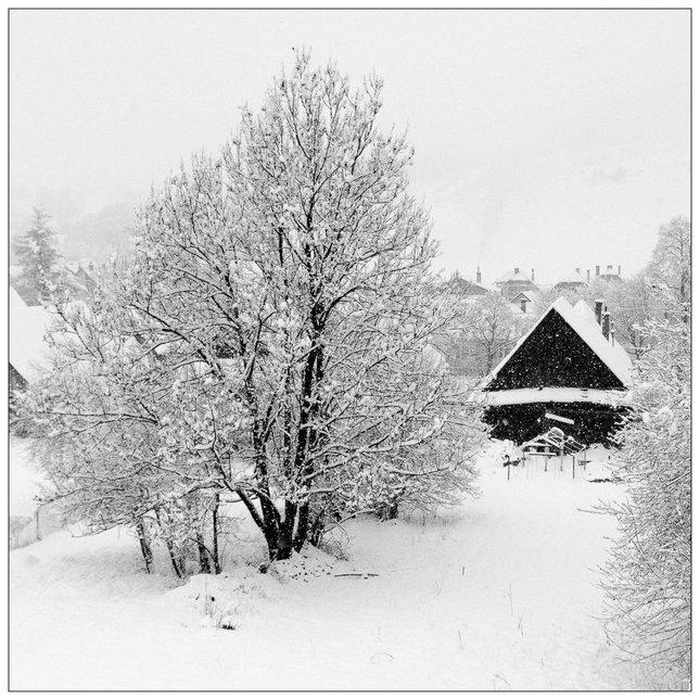 One Last Snow 2014