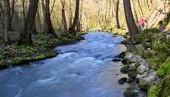 Jarný tok