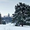 Zima v Smolenickom parku