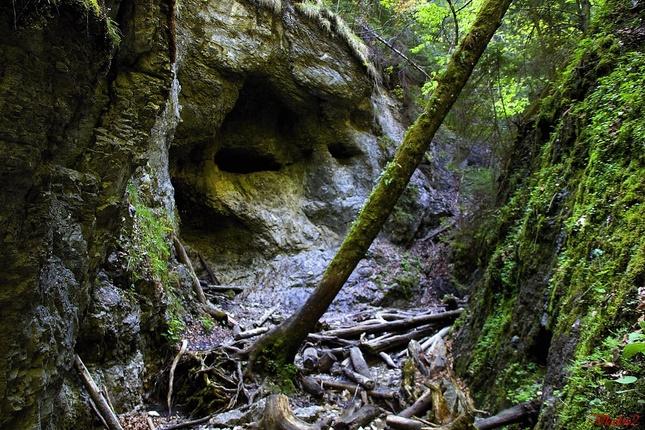 Pozerajúca skala