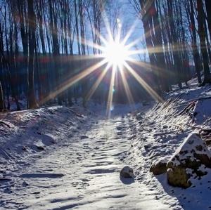 Slnko na dosach