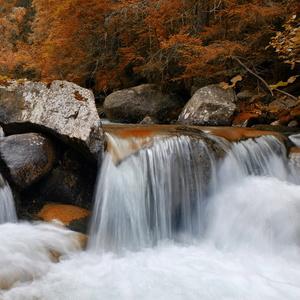Kežmarská Biela voda
