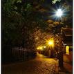 nočnými uličkami II