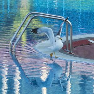 Inšpekcia v aquaparku