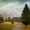 Cesta k prírode