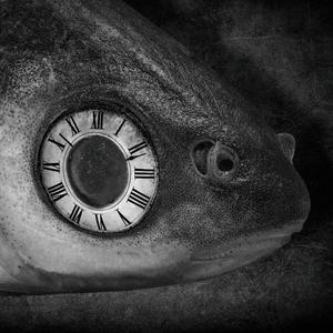 Dilema času
