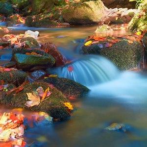 Jesenný potôčik