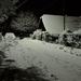Dedina v noci