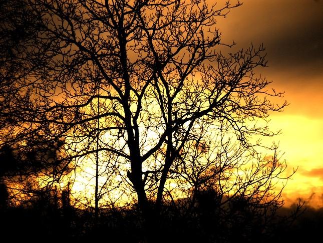 jarny zapad slnka