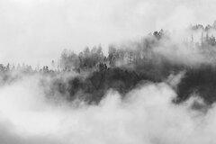 v cloud-e
