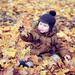 jesenné hrádky