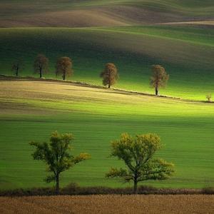 Moravské Slovácko