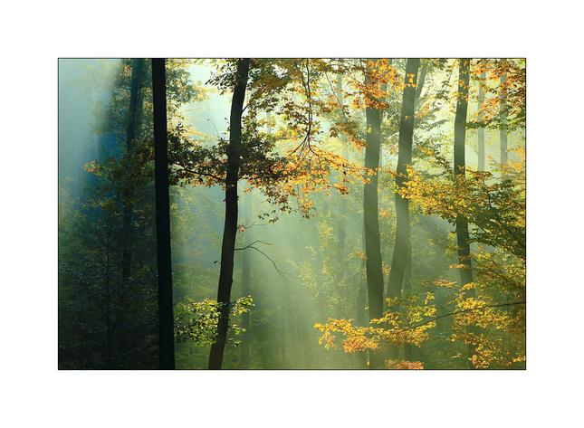 Podzimní Chřiby
