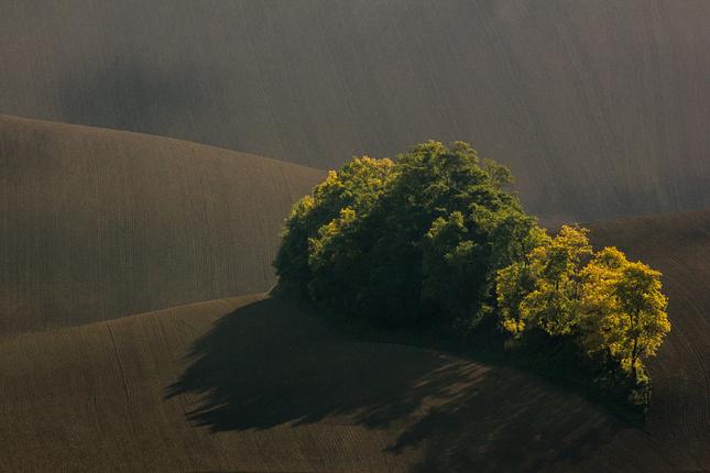Klíny Jižní Moravy