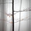 Mlhavá samota