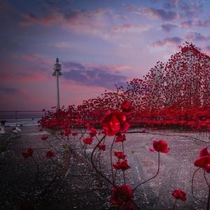 memory of WWI