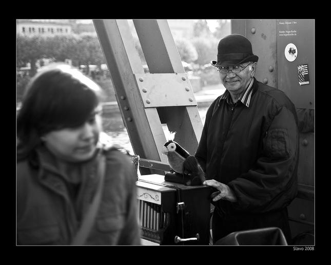 Poulicny muzikant