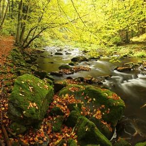 Podzim v údolí...