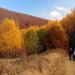 Jesenné potulky
