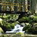 nad potokom leží most