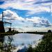 Mlyny pri Rotterdame