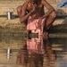 Ranná hygiena pri Gange