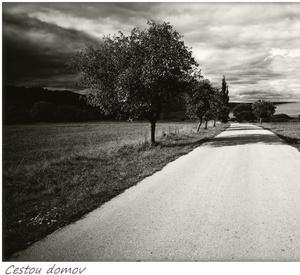 Cestou domov