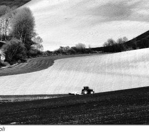 Jarné práce na poli