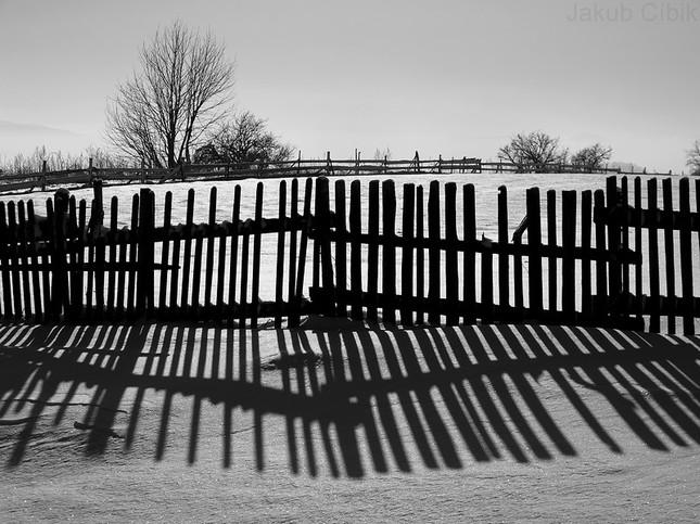 Zimný plot