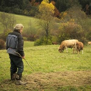 Stretnutie s pastierom