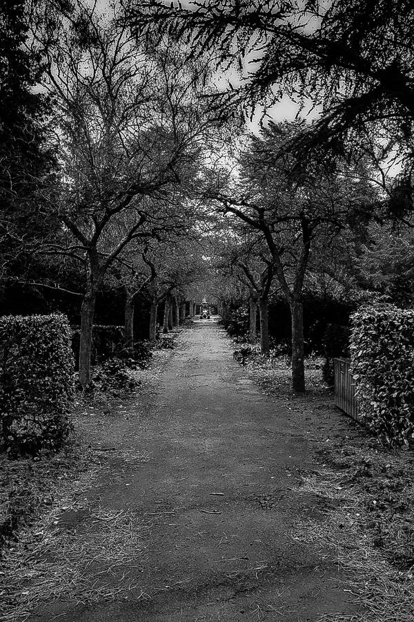 Strašidelný park