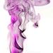dymová ružovo-fialová