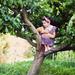 na jabloni