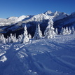 Alpská romanca..))