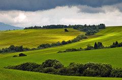Zelená je tráva ...