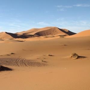 Ráno na púšti