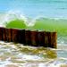 Burlivé more