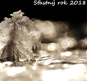 Ľadový stromček