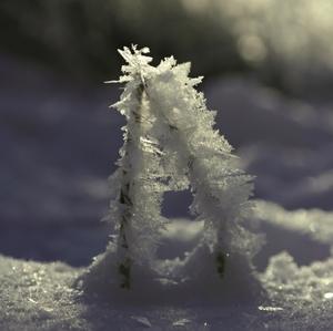 """Ľadové """"áčko"""""""